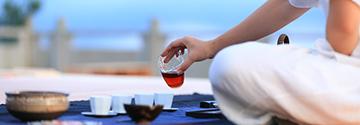 地标茶博会茶叶展解读四大产茶区